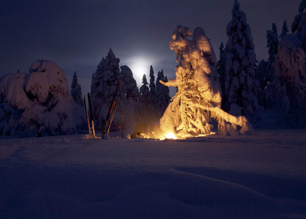Vinterlandskap.indd