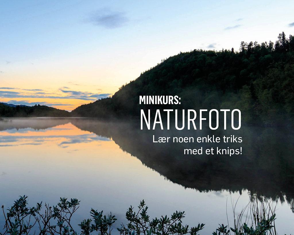 Naturfoto.jpg